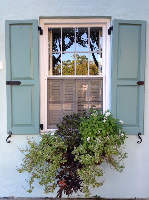 charlestonwindows